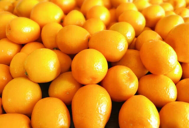 金柑の抗酸化作用で免疫をアップさせて風邪予防!金柑スムージーの作り方