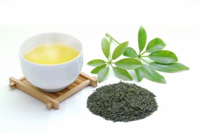 温かい緑茶