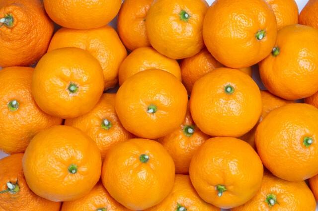 柑橘類の選び方